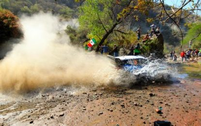 M-Sport Ford World Rally Team's successful year